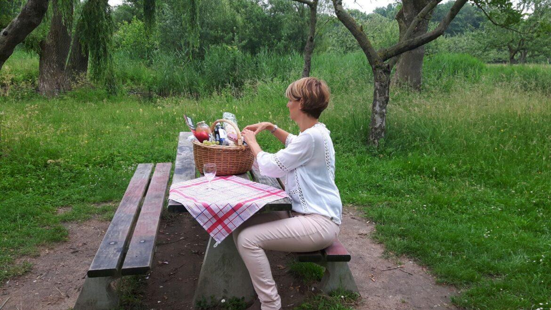 3 juli: Benefiet picknick voor de Mantelmeeuw